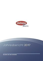 Download: Gruppe | Jahresbericht 2017